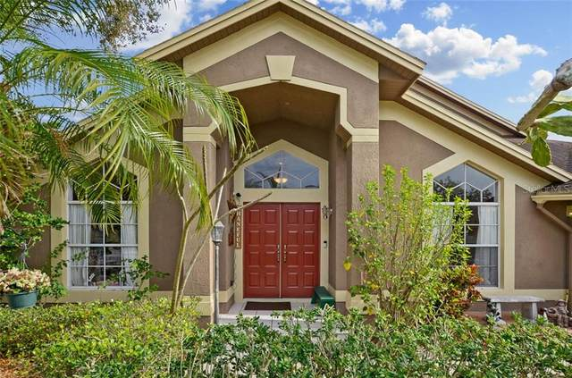 18407 Canary Lane, Lutz, FL 33558 (MLS #T3226781) :: Griffin Group