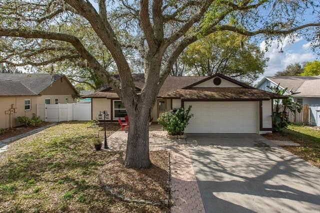 1617 Gunsmith Drive, Lutz, FL 33559 (MLS #T3226803) :: Griffin Group