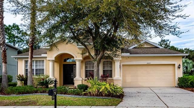 27435 Silver Thatch Drive, Wesley Chapel, FL 33544 (MLS #T3226814) :: Charles Rutenberg Realty