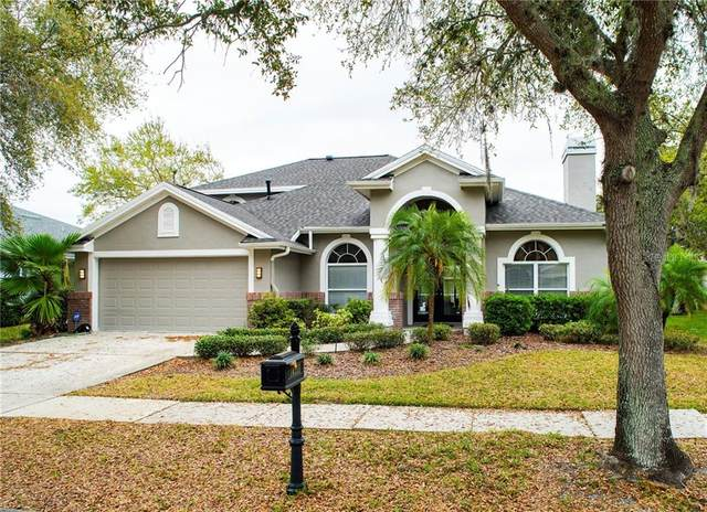 10355 Abbotsford Drive, Tampa, FL 33626 (MLS #T3226844) :: The Duncan Duo Team