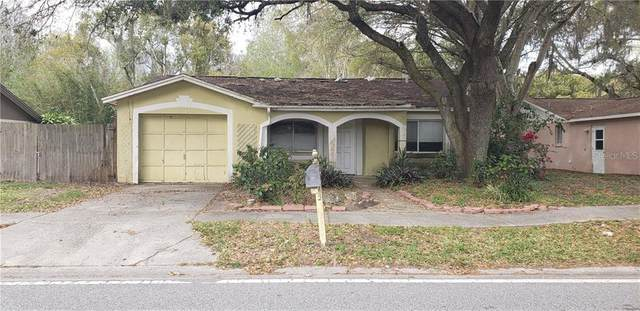 21439 Northwood Drive, Lutz, FL 33549 (MLS #T3226846) :: Griffin Group