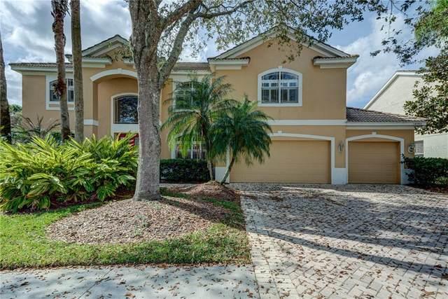 18004 Avalon Lane, Tampa, FL 33647 (MLS #T3226848) :: 54 Realty