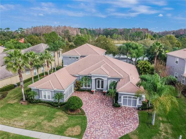 11717 Glen Wessex Court, Tampa, FL 33626 (MLS #T3226854) :: Mark and Joni Coulter | Better Homes and Gardens