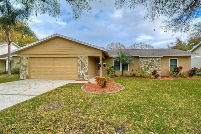 5827 Bitter Orange Avenue, Tampa, FL 33625 (MLS #T3226855) :: Lovitch Group, LLC
