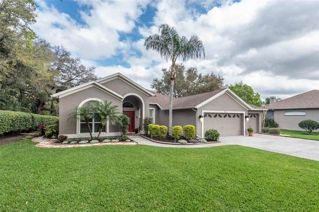 4702 Marsh Hawk Court, Valrico, FL 33596 (MLS #T3226857) :: Cartwright Realty