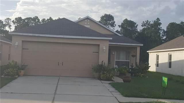 30543 Birdhouse Drive, Wesley Chapel, FL 33545 (MLS #T3226873) :: Real Estate Chicks