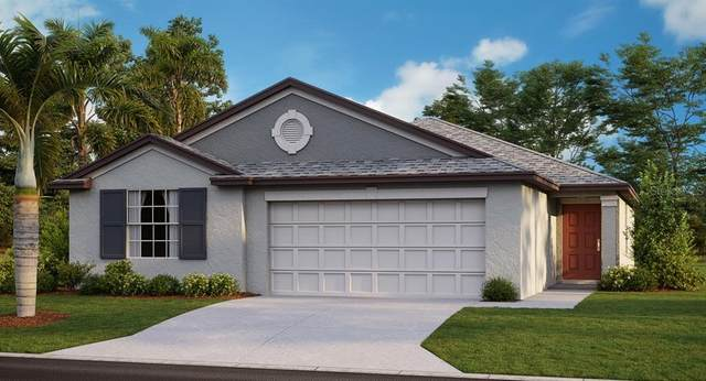 10948 Rainbow Pyrite Drive, Wimauma, FL 33598 (MLS #T3226892) :: The Duncan Duo Team