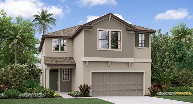 8960 Flourish Drive, Land O Lakes, FL 34637 (MLS #T3226901) :: Rabell Realty Group
