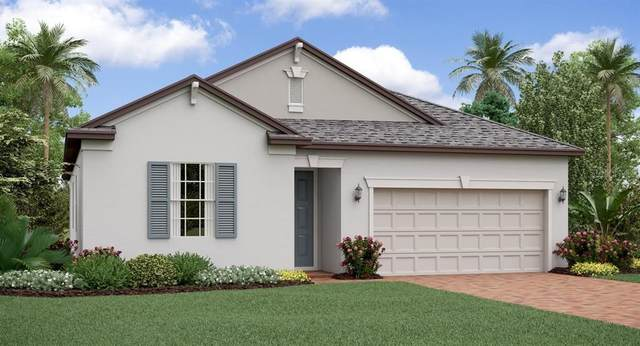 9205 Shadyside Lane, Land O Lakes, FL 34637 (MLS #T3226919) :: Rabell Realty Group