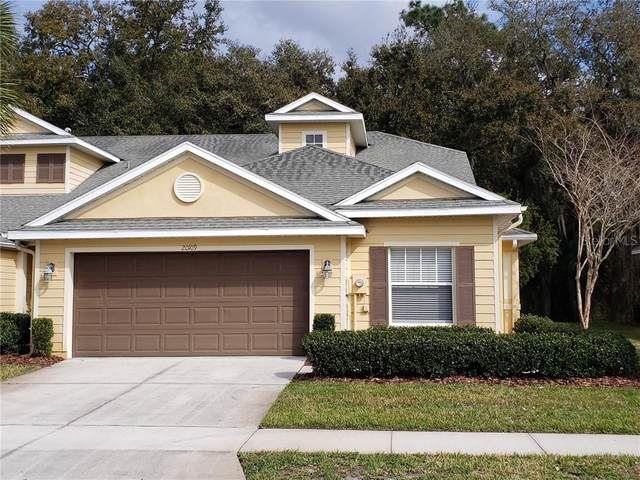 20109 Weeping Laurel Place, Tampa, FL 33647 (MLS #T3226926) :: Cartwright Realty