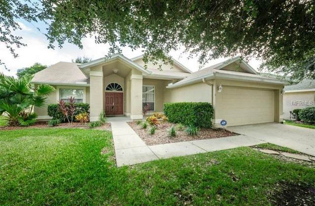 1282 Paradise Lake Drive, Tarpon Springs, FL 34689 (MLS #T3226947) :: Baird Realty Group
