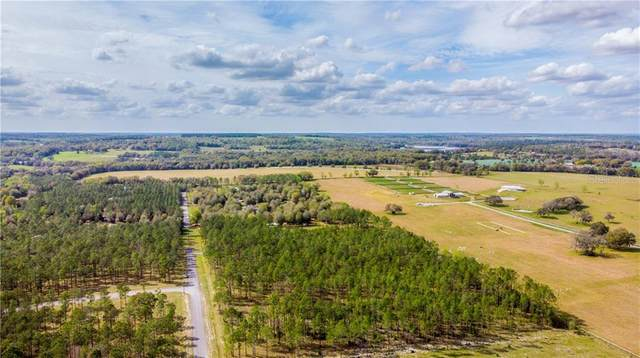 LOT 59 Pony Pond Road, Dade City, FL 33523 (MLS #T3226957) :: Team TLC | Mihara & Associates