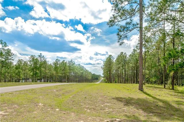 LOT 61 Pony Pond Road, Dade City, FL 33523 (MLS #T3226959) :: Team TLC | Mihara & Associates