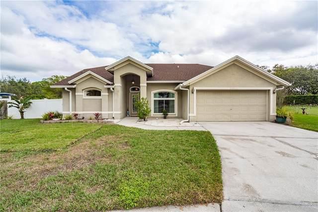 28811 Creekwood Drive, Wesley Chapel, FL 33545 (MLS #T3226999) :: Premium Properties Real Estate Services