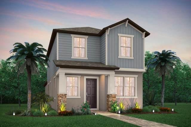 11853 Blamey Trail, Odessa, FL 33556 (MLS #T3227000) :: Griffin Group