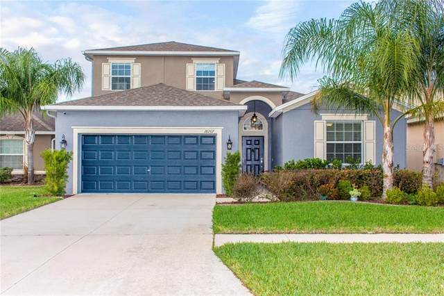 18267 Thatcham Court, Land O Lakes, FL 34638 (MLS #T3227010) :: 54 Realty