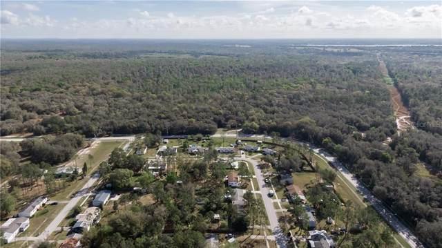 13065 Morris Bridge Road, Thonotosassa, FL 33592 (MLS #T3227026) :: Sarasota Home Specialists