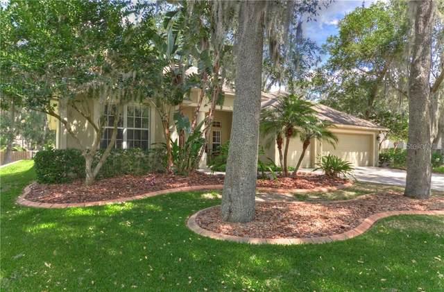302 Red Elm Place, Seffner, FL 33584 (MLS #T3227041) :: Keller Williams on the Water/Sarasota