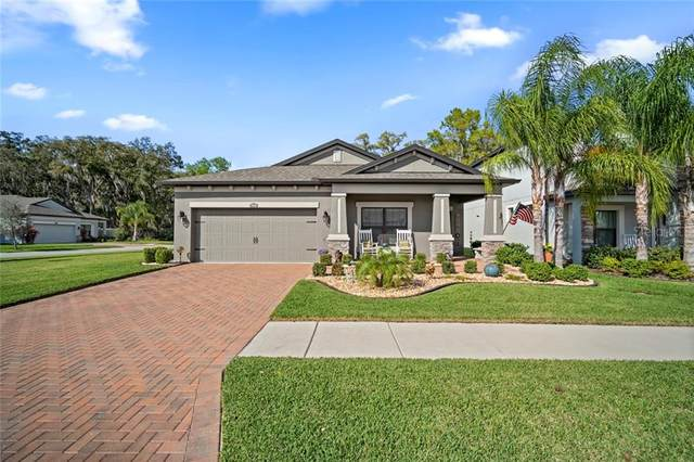 10404 Arbor Groves Place, Riverview, FL 33578 (MLS #T3227101) :: Rabell Realty Group