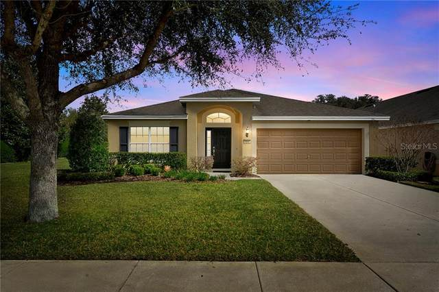 1040 Sea Holly Drive, Brooksville, FL 34604 (MLS #T3227110) :: Alpha Equity Team