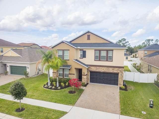 3084 Calvano Drive, Land O Lakes, FL 34639 (MLS #T3227125) :: 54 Realty