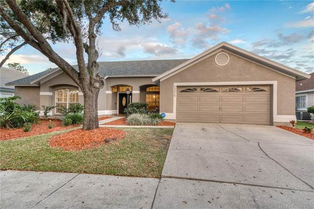 12425 Seabrook Drive, Tampa, FL 33626 (MLS #T3227138) :: The Duncan Duo Team