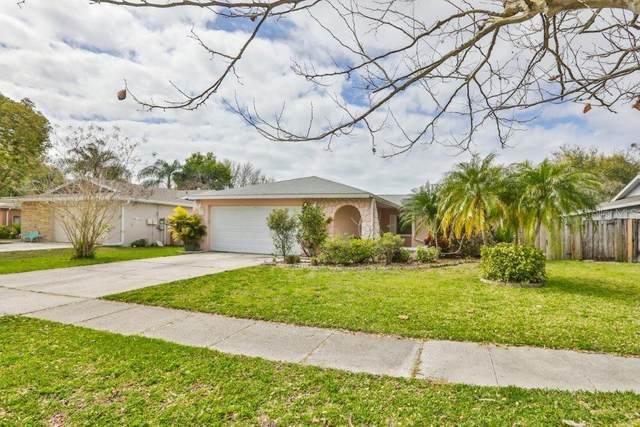 416 Tangerine Drive, Oldsmar, FL 34677 (MLS #T3227165) :: Griffin Group