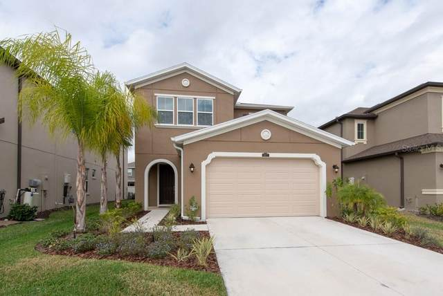 4477 Tramanto Lane, Wesley Chapel, FL 33543 (MLS #T3227169) :: Baird Realty Group