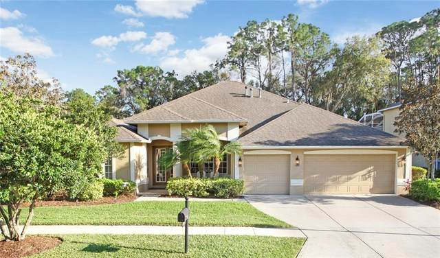 2600 Brookforest Drive, Wesley Chapel, FL 33544 (MLS #T3227172) :: Baird Realty Group