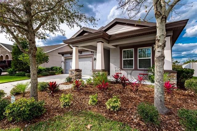 6339 Hawk Grove Court, Wesley Chapel, FL 33545 (MLS #T3227175) :: The Duncan Duo Team