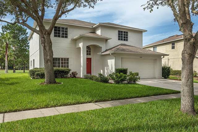 11002 Sailbrooke Drive, Riverview, FL 33579 (MLS #T3227224) :: Premium Properties Real Estate Services