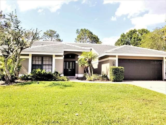 30231 Fairway Drive, Wesley Chapel, FL 33543 (MLS #T3227235) :: Griffin Group