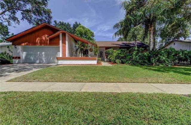 520 Radnor Drive, Palm Harbor, FL 34683 (MLS #T3227284) :: Baird Realty Group