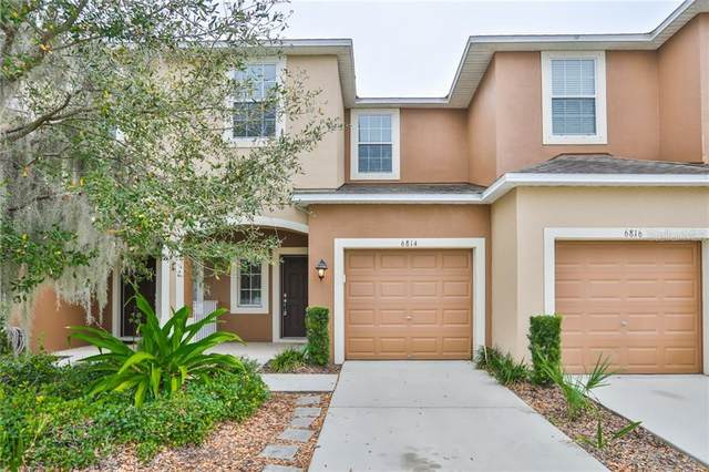 6814 Holly Heath Drive, Riverview, FL 33578 (MLS #T3227304) :: EXIT King Realty