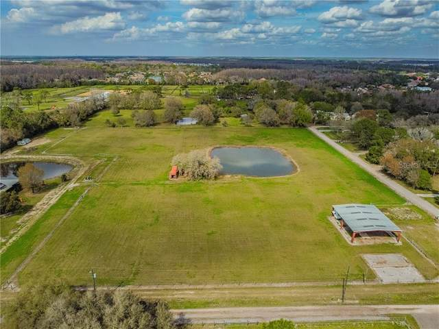 1085 Bluefield Road, Odessa, FL 33556 (MLS #T3227325) :: Rabell Realty Group