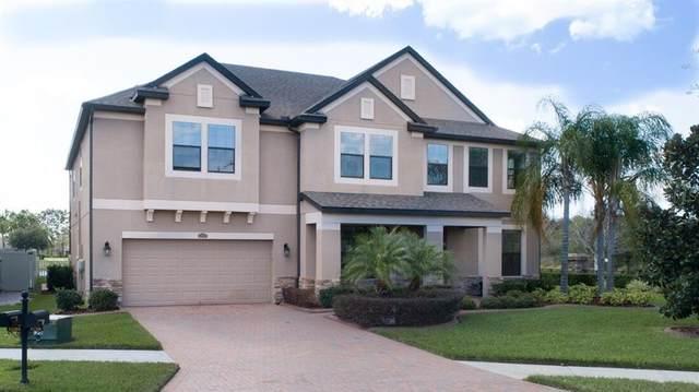 13301 Sunset Shore Circle, Riverview, FL 33579 (MLS #T3227353) :: Team Bohannon Keller Williams, Tampa Properties