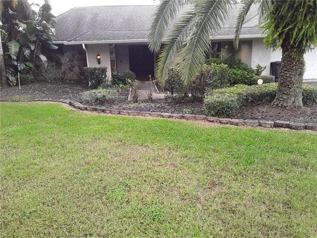 3801 Lake Padgett Drive, Land O Lakes, FL 34639 (MLS #T3227377) :: Delgado Home Team at Keller Williams