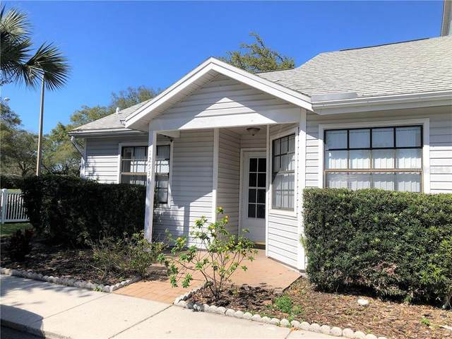 12531 Castle Hill Drive, Tampa, FL 33624 (MLS #T3227405) :: The Duncan Duo Team