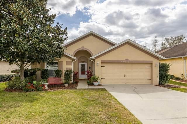 31332 Satinleaf Run, Brooksville, FL 34602 (MLS #T3227438) :: Sarasota Home Specialists