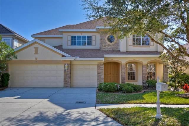 17813 Arbor Creek Drive, Tampa, FL 33647 (MLS #T3227452) :: 54 Realty