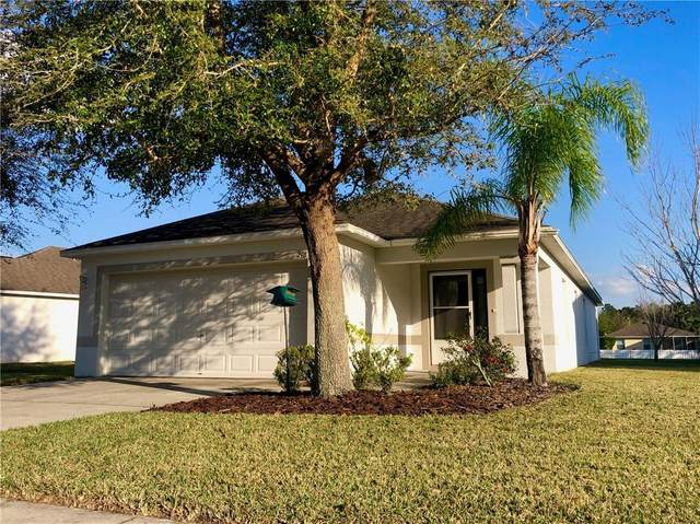 298 Fairmont Drive, Spring Hill, FL 34609 (MLS #T3227495) :: EXIT King Realty