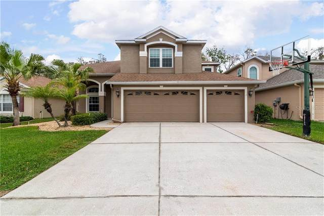 23901 Hastings Way, Land O Lakes, FL 34639 (MLS #T3227508) :: Delgado Home Team at Keller Williams