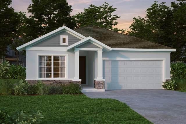 15215 Caravan Avenue, Odessa, FL 33556 (MLS #T3227531) :: Baird Realty Group