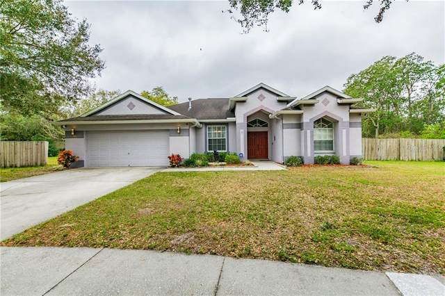 9646 Greenbank Drive, Riverview, FL 33569 (MLS #T3227544) :: Rabell Realty Group