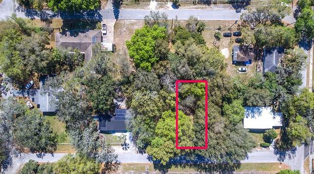 4307 E Frierson Avenue, Tampa, FL 33610 (MLS #T3227656) :: The Nathan Bangs Group