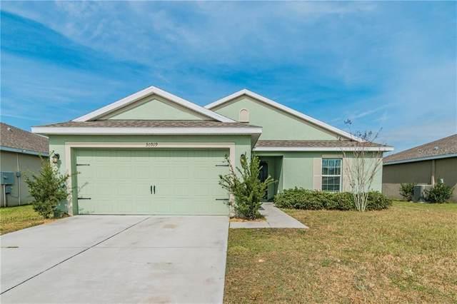 30919 Water Lily Drive, Brooksville, FL 34602 (MLS #T3227715) :: Sarasota Home Specialists