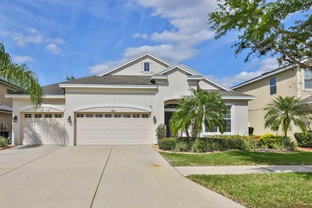12419 Fairlawn Drive, Riverview, FL 33579 (MLS #T3227763) :: Homepride Realty Services
