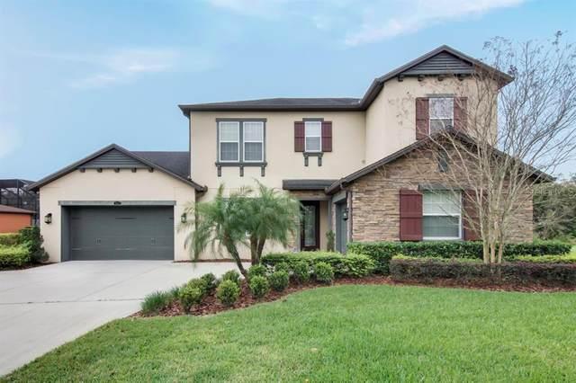 2613 Cordoba Ranch Boulevard, Lutz, FL 33559 (MLS #T3227789) :: Medway Realty