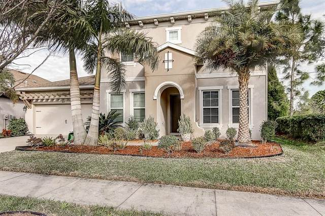 6635 Current Drive, Apollo Beach, FL 33572 (MLS #T3227820) :: Lovitch Group, Keller Williams Realty South Shore