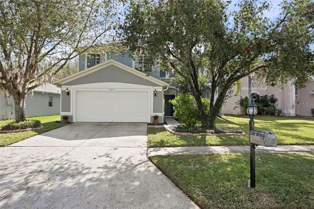 18155 Sandy Pointe Drive, Tampa, FL 33647 (MLS #T3227821) :: Dalton Wade Real Estate Group